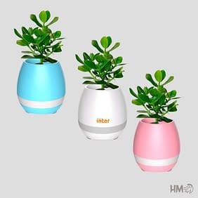 Vaso de planta musical e luminária